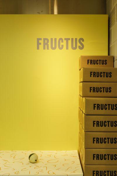 FRUCTUS-13